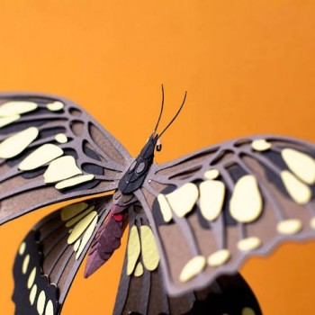 Diana Beltran Herrera esculturas de papel aves mariposas 4