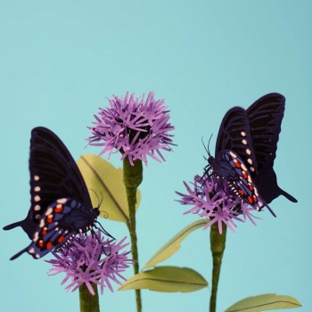 Diana Beltran Herrera esculturas de papel aves mariposas 7