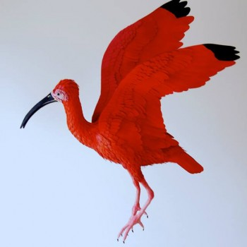 Diana Beltran Herrera esculturas de papel aves mariposas 8