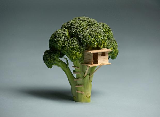 Brock-Davis.-Broccoli-house