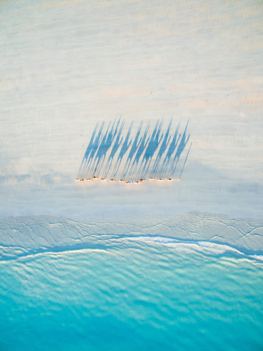 Fotos ganadoras: Drone photo of Camels on Cable Beach by Todd Kennedy