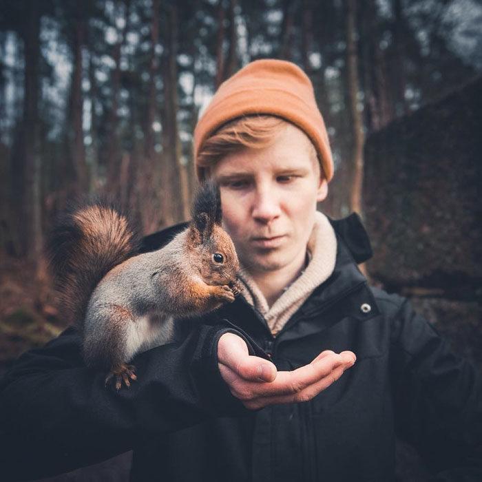 fotografías de animales silvestres por Konsta Punkka