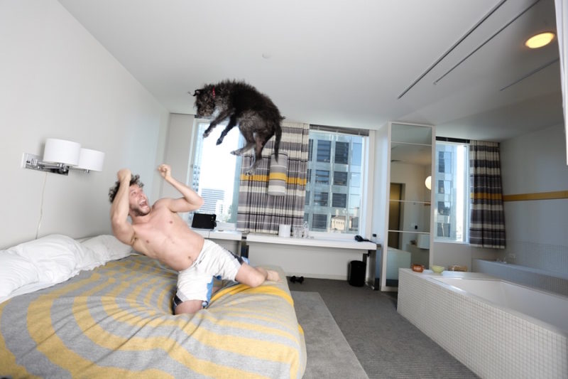 Divertida sesión de fotos fotografo Mik Milman perro 3
