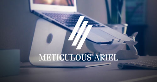 meticulous-ariel-free-font
