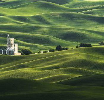 Hamish Mitchell - National Geographic Nature Photographer