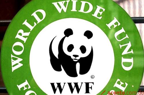 Propuesta de logo para la WWF