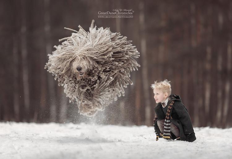 fotografías de niños jugando con perros en la nieve