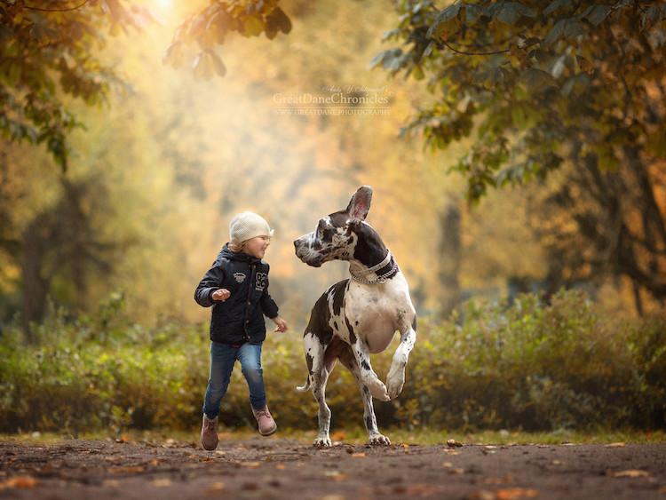 fotografías de niños jugando con perros