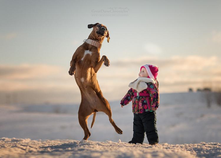 fotografías de niños jugando con grandes perros