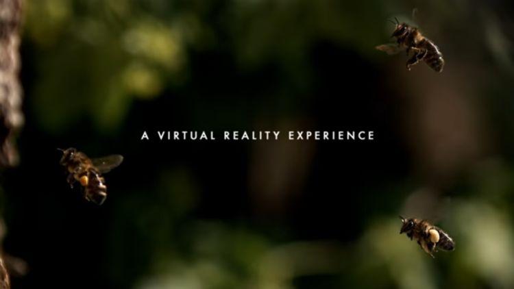 Campaña en realidad virtual a favor del planeta