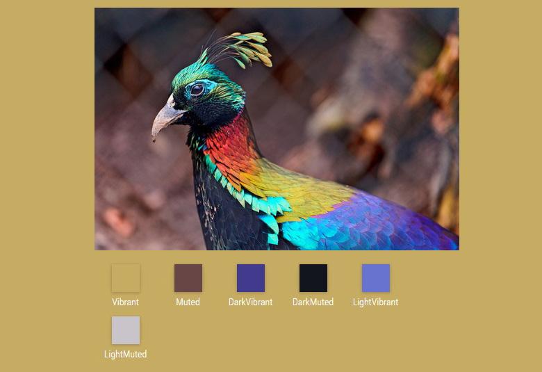 extraer colores de imágenes con javascript