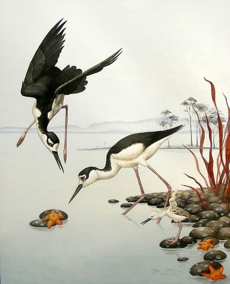 ilustraciones inspiradas en la naturaleza