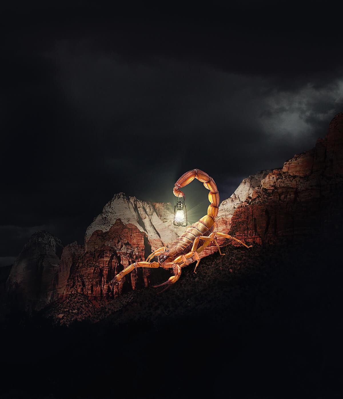 Fotografías surrealistas por Hüseyin Sahin