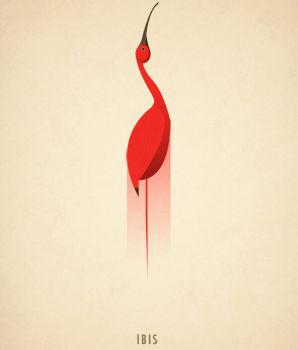 Ilustraciones tipograficas inspiradas en el reino animal (9)