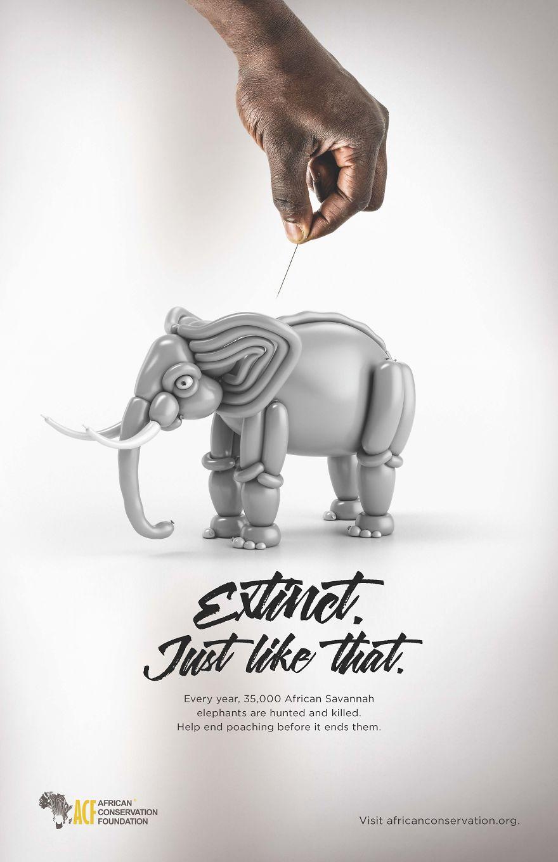 Campaña gráfica para crear conciencia sobre animales en peligro de extinción