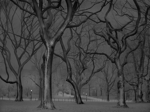 Fotografía nocturna de Central Park