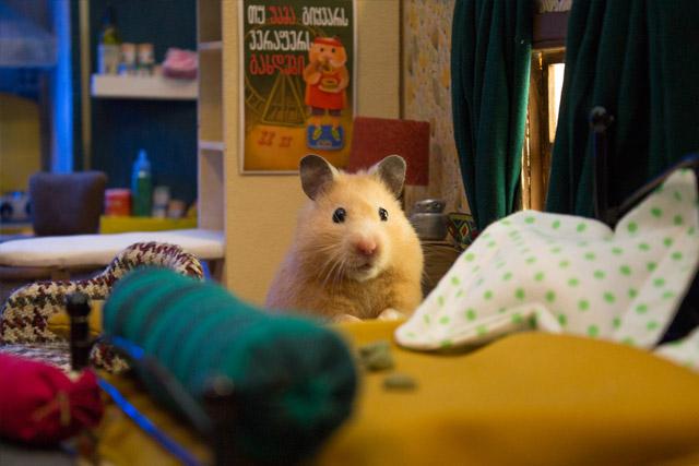 ciudad miniatura para hamsters