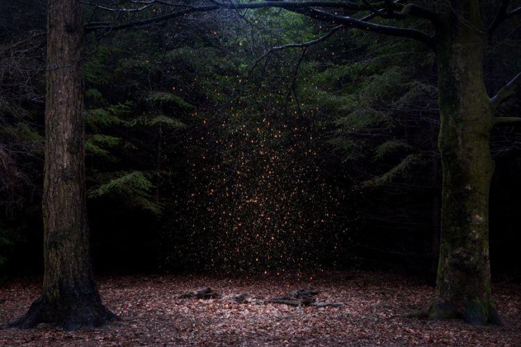 Stars por Ellie Davis, Reino Unido.