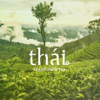 Thai MilkTea (1)