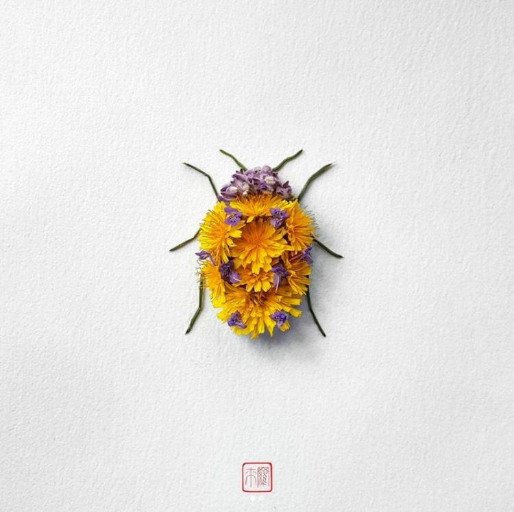 Insectos con pétalos de flores