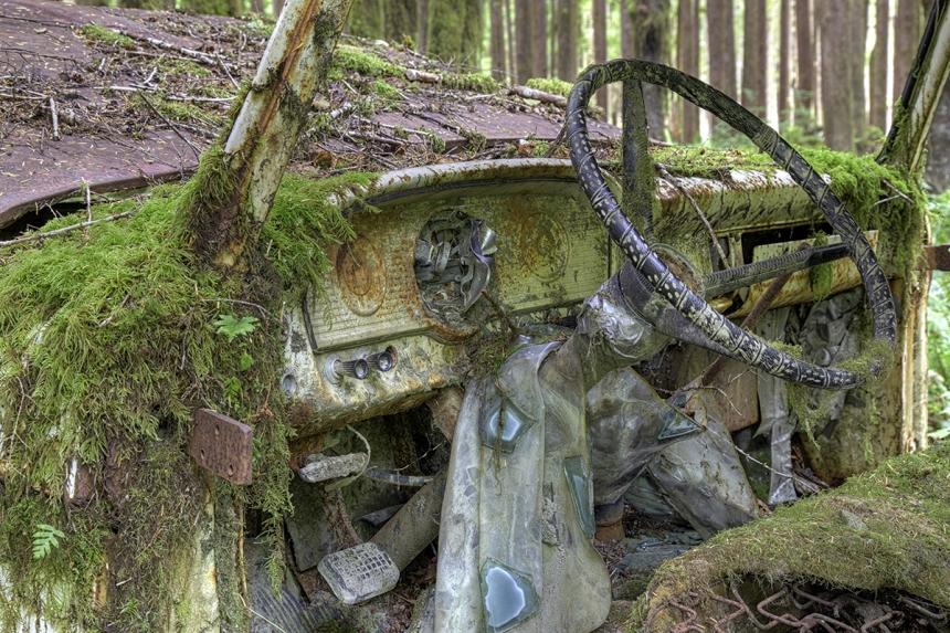 Naturaleza devorando objetos olvidados por el hombre