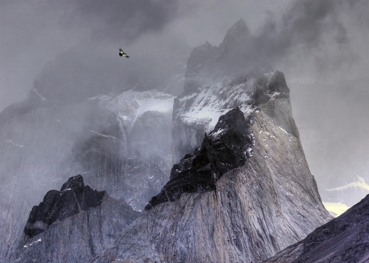 Condor over mountains por Ben Hall