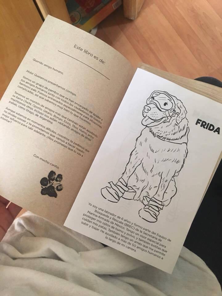 Libro para colorear basado en Frida