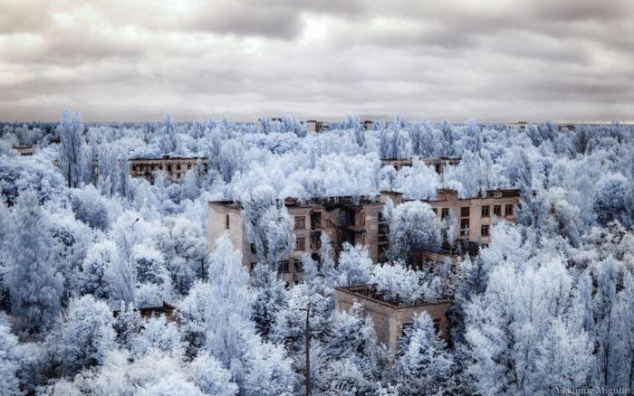 Chernobyl (7)