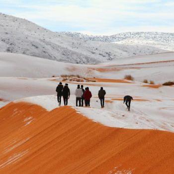 Fotografias de la nevada en el Sahara (4)