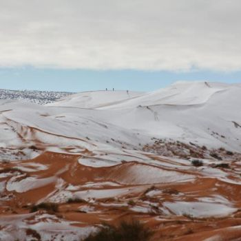 Fotografias de la nevada en el Sahara (5)