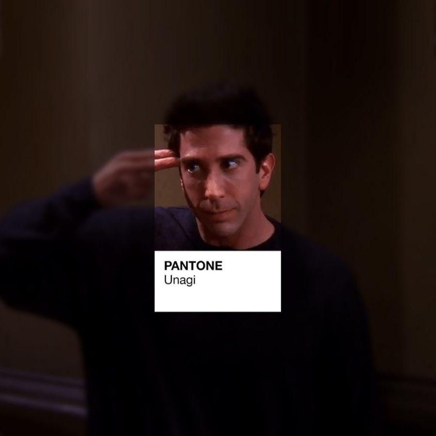 friends pantone (1)
