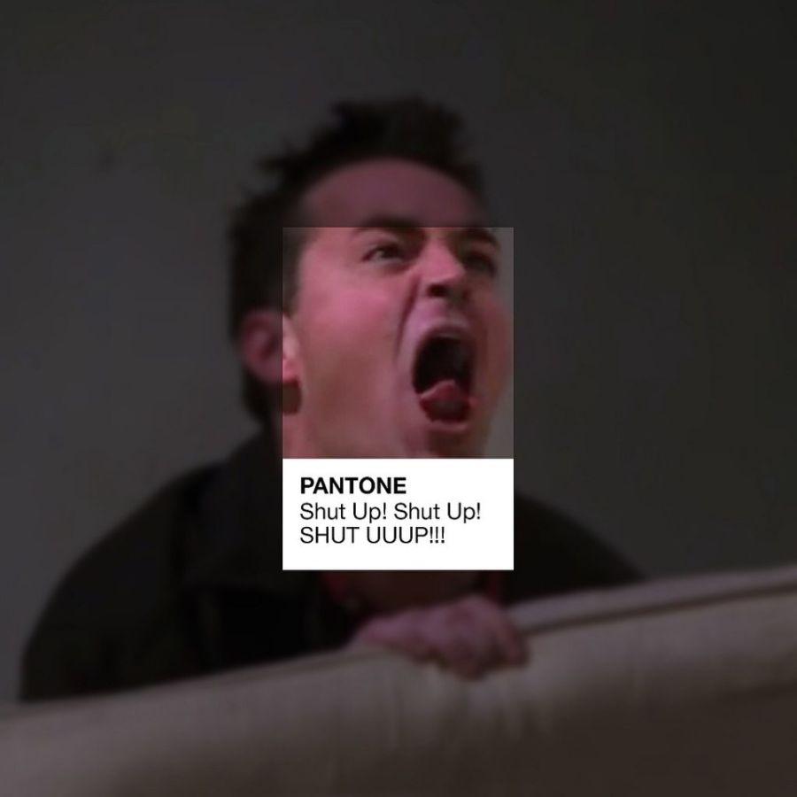 friends pantone (7)