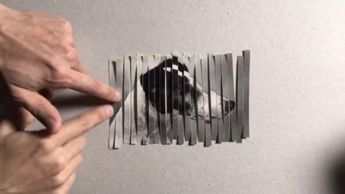 clonar una foto con una trituradora