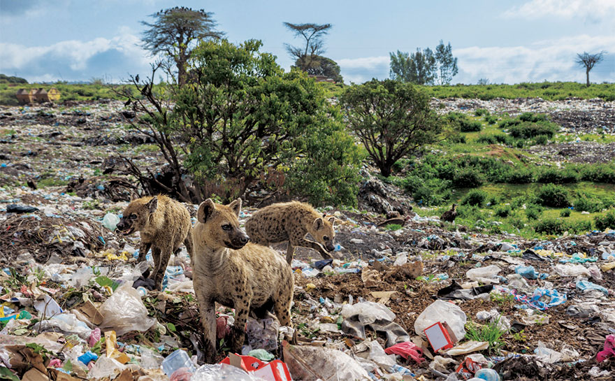 fotos contaminacion (10)