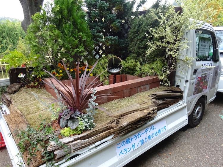 camiones jardines (10)