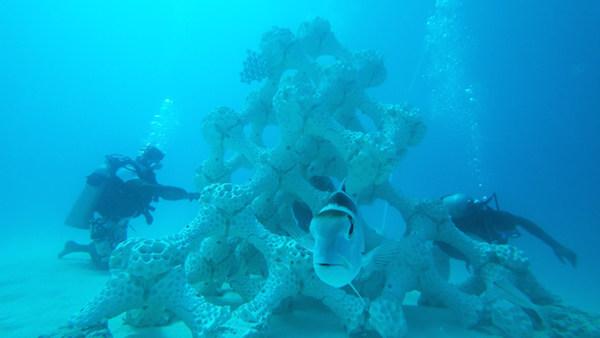 Arrecifes impresos en 3D para cultivar y restaurar los corales