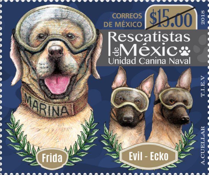 Diseño de estampilla en honor a los perritos rescatistas en México