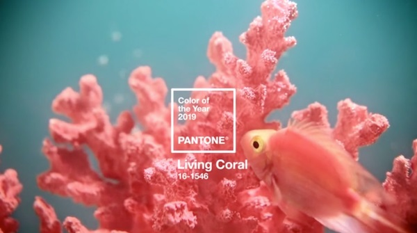 Color del año 2019 Pantone