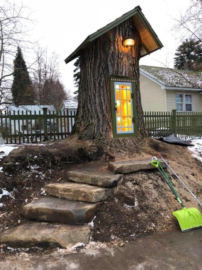 Biblioteca callejera creada en el tronco de un árbol