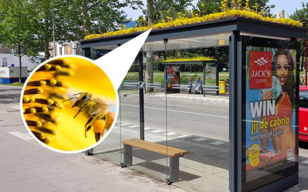 Paradas de autobús eco-friendly